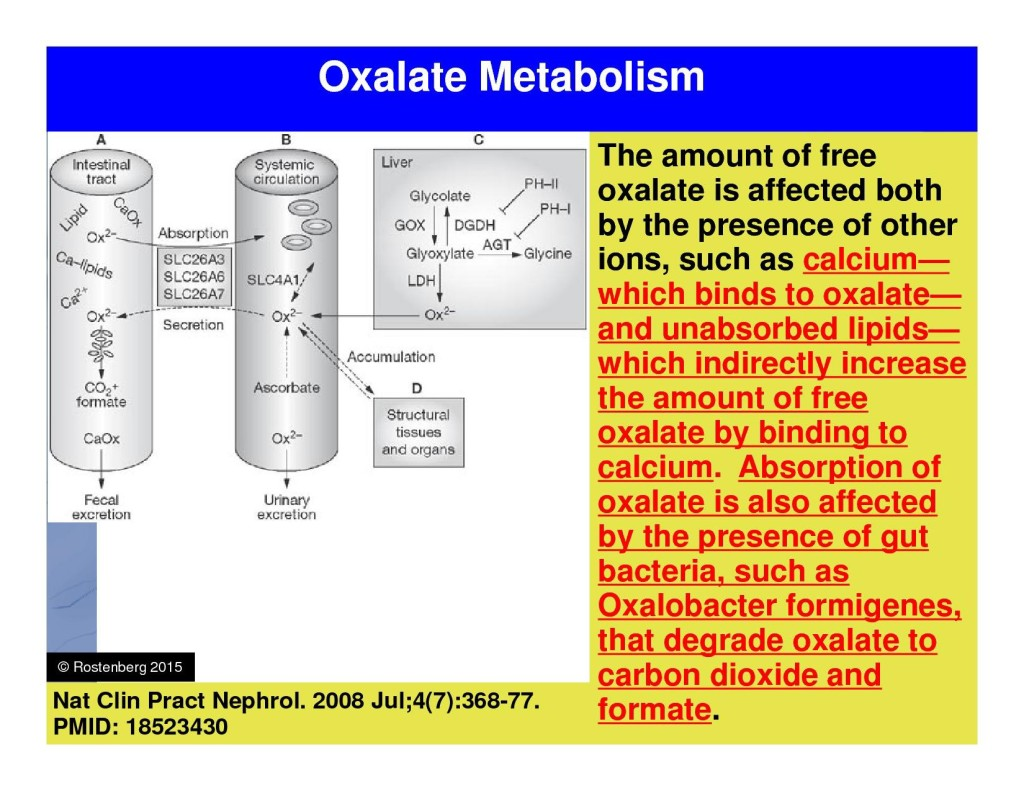 Gut Oxalate Absorption Chart